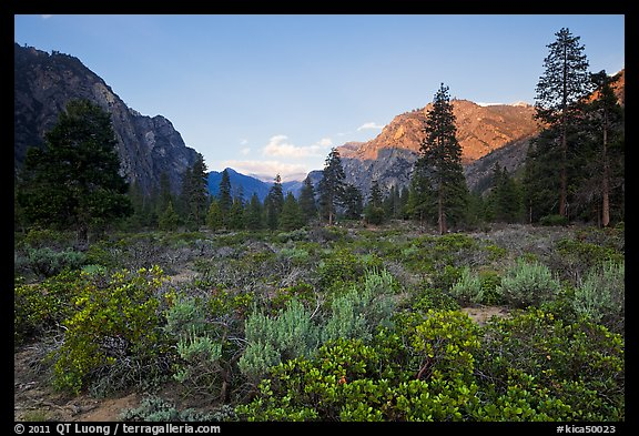 Meadow and cliffs at sunset, Cedar Grove. Kings Canyon National Park (color)