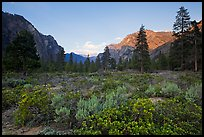 Meadow and cliffs at sunset, Cedar Grove. Kings Canyon National Park ( color)