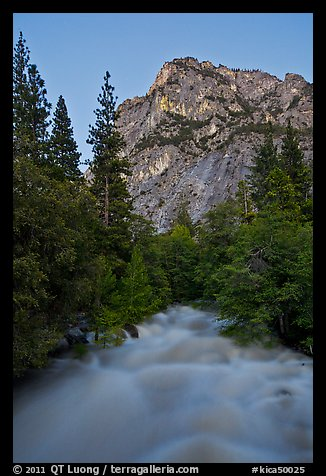 Roaring River flowing at dusk. Kings Canyon National Park (color)