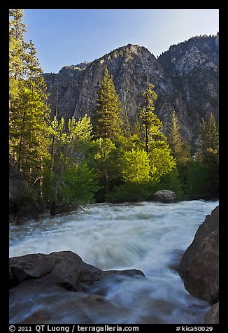 Granite River below Roaring River Falls. Kings Canyon National Park, California, USA.