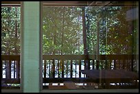 South Forks of the Kings River, Cedar Grove Lodge window reflexion. Kings Canyon National Park ( color)