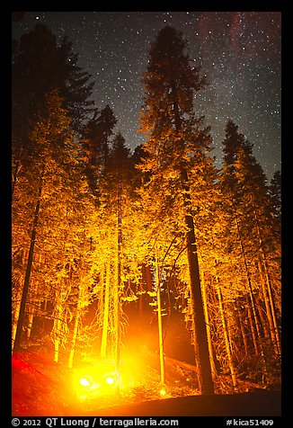 Fire amongst the sequoias, and starry sky. Kings Canyon National Park (color)