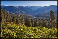 View over Hume Lake and Sierra Nevada from Panoramic Point. Kings Canyon National Park ( color)