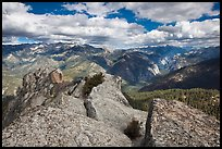 View from  top of Lookout Peak. Kings Canyon National Park ( color)