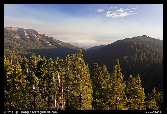 Redwood Mountain valley. Kings Canyon National Park (color)