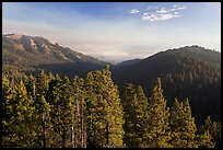 Redwood Mountain valley. Kings Canyon National Park ( color)