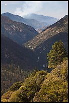 Valley carved by the Kings River. Kings Canyon National Park ( color)