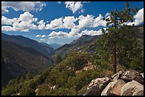 Canyon of the Kings River from Cedar Grove Overlook. Kings Canyon National Park, California, USA.