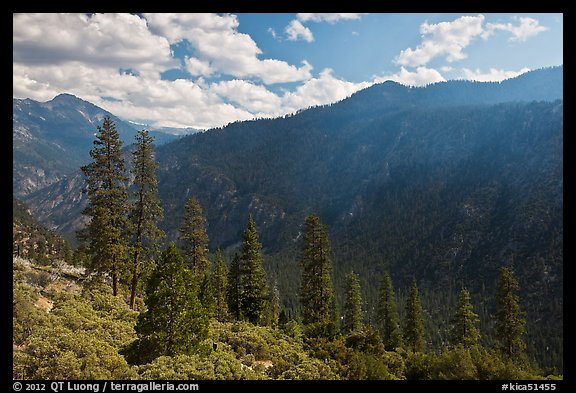 Cedar Grove valley seen from North Rim. Kings Canyon National Park (color)