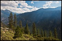 Cedar Grove valley seen from North Rim. Kings Canyon National Park, California, USA. (color)