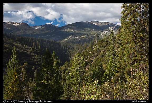 Kennedy Mountain above Lewis Creek. Kings Canyon National Park (color)