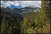 Kennedy Mountain above Lewis Creek. Kings Canyon National Park, California, USA. (color)