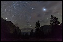 Trees and cliffs at night, Cedar Grove. Kings Canyon National Park ( color)
