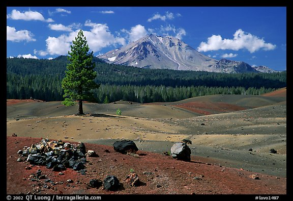 Painted dunes, pine tree, and Lassen Peak. Lassen Volcanic National Park, California, USA.