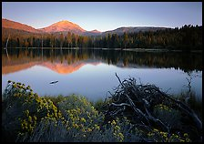 Manzanita lake and Mount Lassen in late summer, sunset. Lassen Volcanic National Park, California, USA.