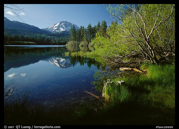Lassen Peak reflected in Manzanita Lake, morning. Lassen Volcanic National Park, California, USA.
