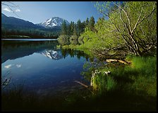 Lassen Peak reflected in Manzanita Lake, morning. Lassen Volcanic National Park ( color)