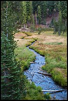 Kings Creek in meadow, late summer. Lassen Volcanic National Park ( color)
