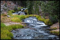 Kings Creek cascades in forest. Lassen Volcanic National Park ( color)