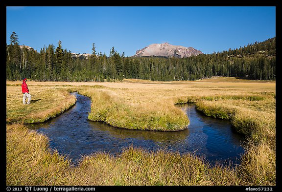 Visitor Looking, Upper Meadow and Lassen Peak. Lassen Volcanic National Park (color)