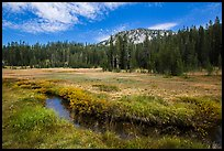 Upper Meadow with stream in late summer. Lassen Volcanic National Park ( color)
