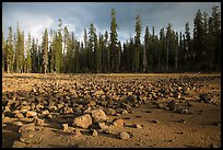 Boulders in dried lake. Lassen Volcanic National Park ( color)