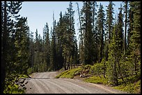 Gravel road. Lassen Volcanic National Park ( color)