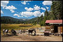 Corral, Drakesbad. Lassen Volcanic National Park ( color)