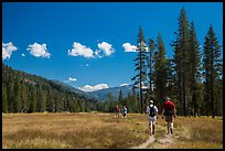 Hikers, Warner Valley. Lassen Volcanic National Park ( color)