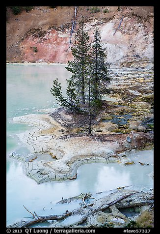 Shore of Boiling Springs Lake. Lassen Volcanic National Park (color)