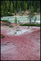 Red cracked mud next to Boiling Springs Lake. Lassen Volcanic National Park, California, USA.