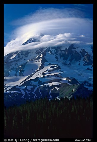 Mt Rainier with lenticular cloud. Mount Rainier National Park (color)