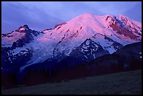 North Face of Mt Rainier, sunrise. Mount Rainier National Park, Washington, USA.