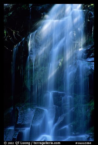 Waterfall in Carbon rainforest area. Mount Rainier National Park, Washington, USA.