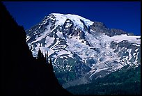 Mt Rainier seen from  Tatoosh range, afternoon. Mount Rainier National Park, Washington, USA.