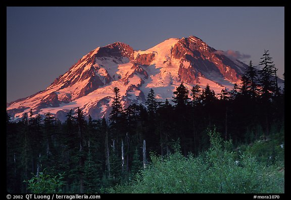 Mt Rainier at sunset from the west side. Mount Rainier National Park (color)