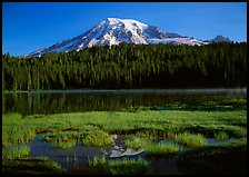Reflection Lake and Mt Rainier, early morning. Mount Rainier National Park ( color)