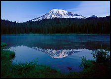Mount Rainier reflected in lake at dawn. Mount Rainier National Park, Washington, USA.