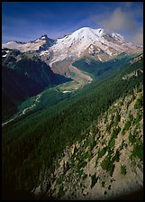 Valley fed by Mount Rainier glaciers, morning, Sunrise. Mount Rainier National Park, Washington, USA.