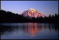 Mt Rainier above Eunice Lake, sunset. Mount Rainier National Park, Washington, USA.
