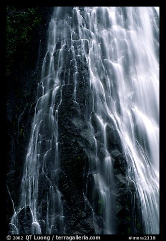 Narada falls. Mount Rainier National Park (color)