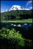Mt Rainier and reflection, early morning. Mount Rainier National Park ( color)
