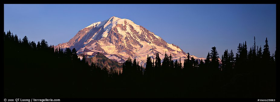 Mount Rainier above forest in silhouette. Mount Rainier National Park (color)
