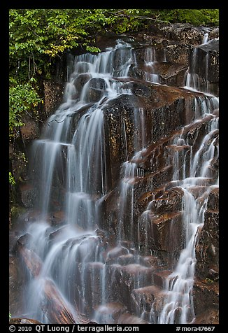 Water cascading over columns of volcanic rock. Mount Rainier National Park (color)