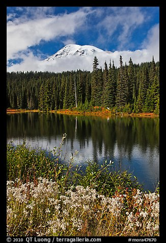 Mount Rainier and clouds seen from reflection lakes. Mount Rainier National Park (color)
