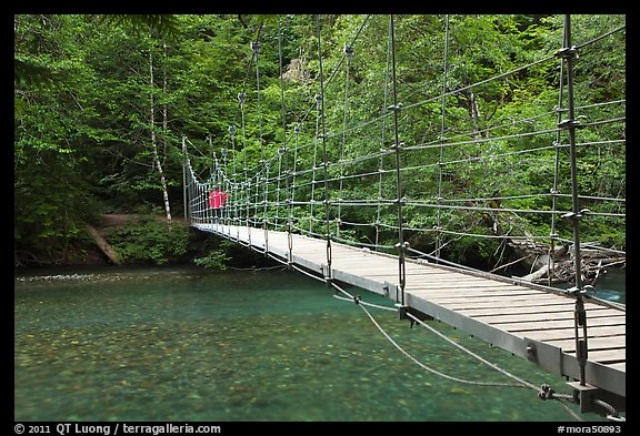 Suspension footbridge over Ohanapecosh River. Mount Rainier National Park, Washington, USA.