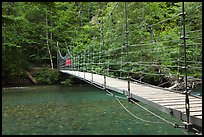 Suspension footbridge over Ohanapecosh River. Mount Rainier National Park, Washington, USA. (color)