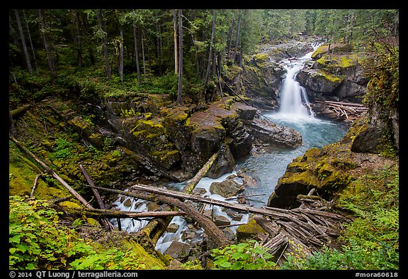 Silver Falls of the Ohanapecosh River. Mount Rainier National Park (color)