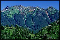 Steep forested peaks, North Cascades National Park. Washington, USA. (color)