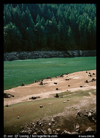 Tree stumps and river, North Cascades National Park Service Complex.  (color)